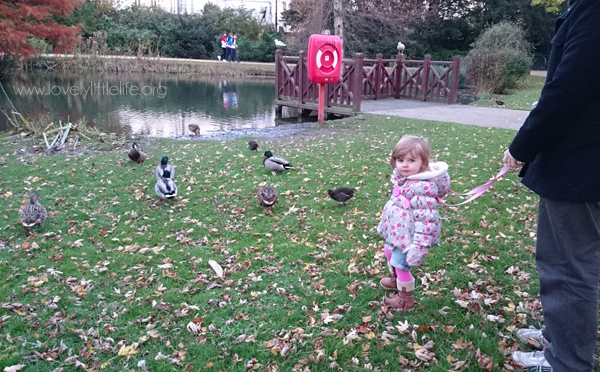 Emma & ducks